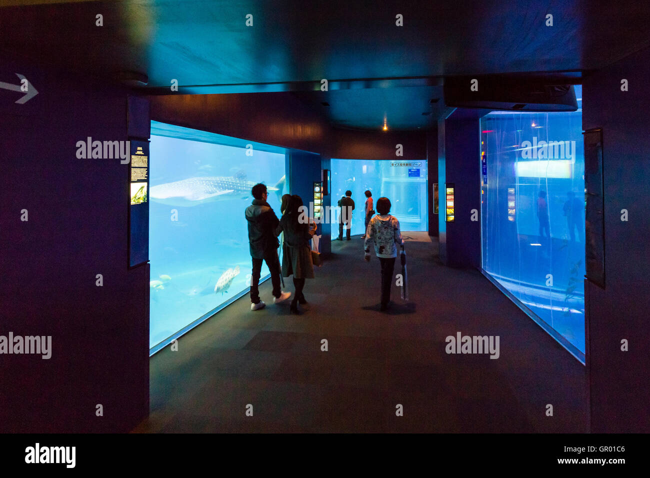 People walking through corridor with large glass panels on either side, through the massive Pacific Sea tank at - Stock Image