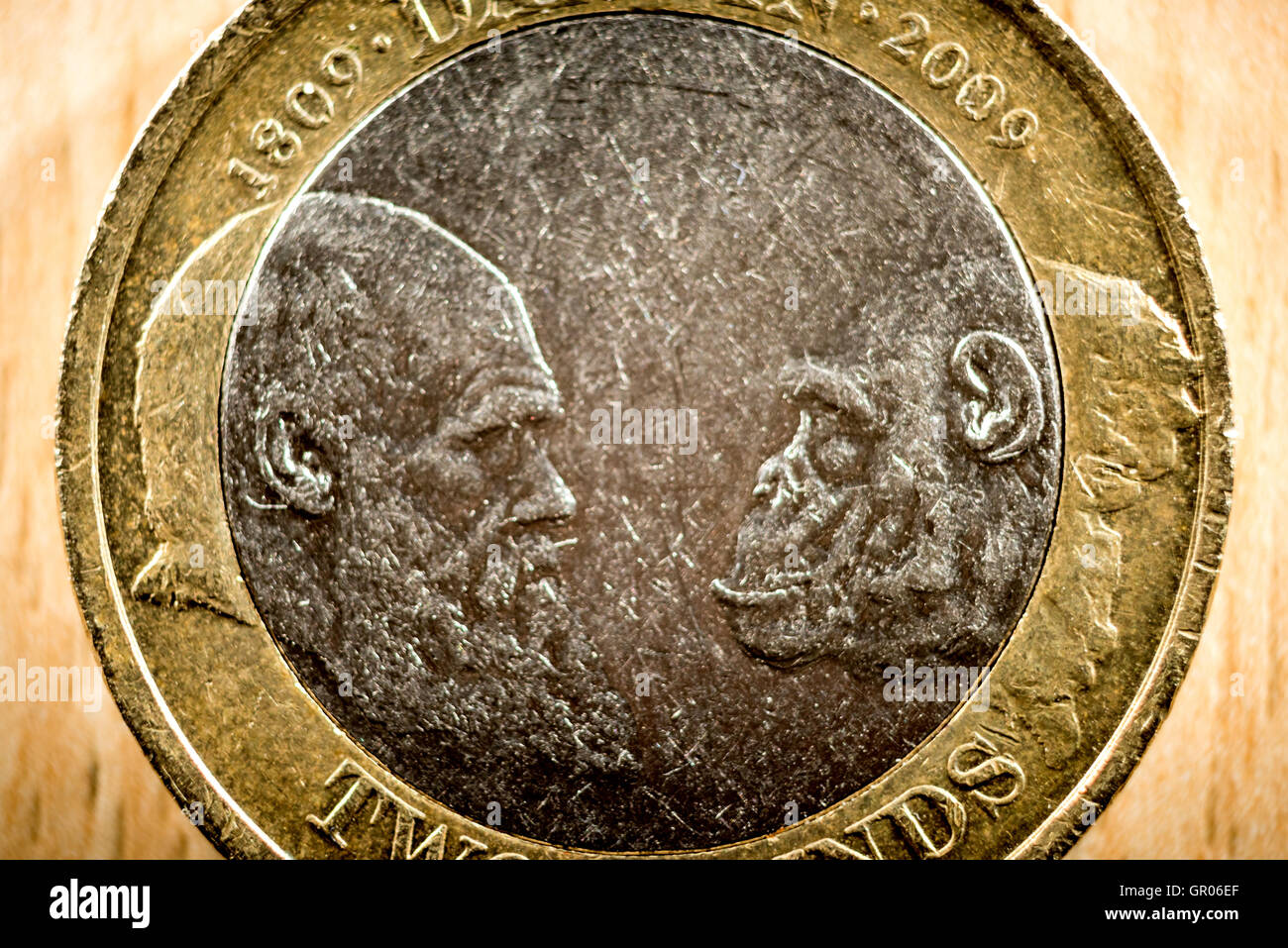 A rare British two pound coin celebrating the 200th anniversary of Charles Darwin's birth. - Stock Image