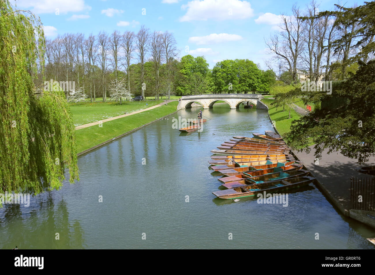 Punts for tourists at river Cam - Stock Image