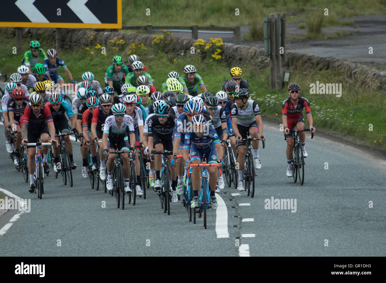 Cheshire, UK. 6th September, 2016. The peloton during the climb to the Cat and Fiddle, containing Sir Bradley Wiggins - Stock Image