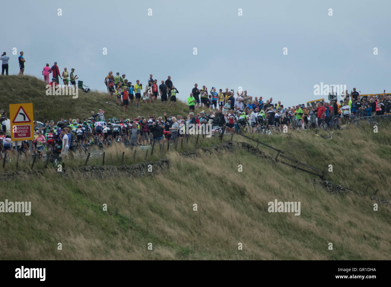 Cheshire, UK. 6th September, 2016. The peloton passing between appreciative crowds during the climb to the Cat and - Stock Image