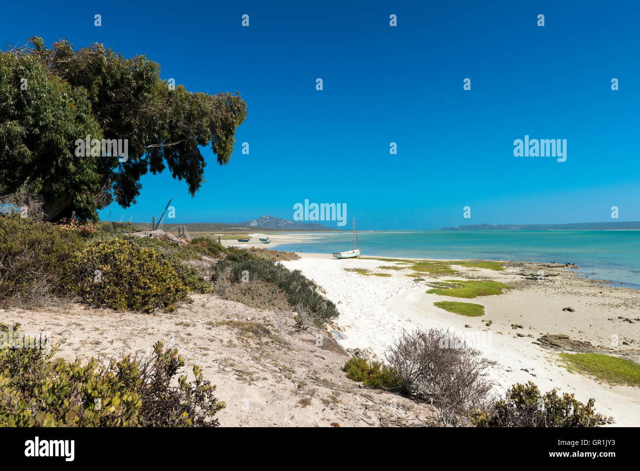 View over Langebaan lagoon, West Coast National Park, South Africa - Stock Image