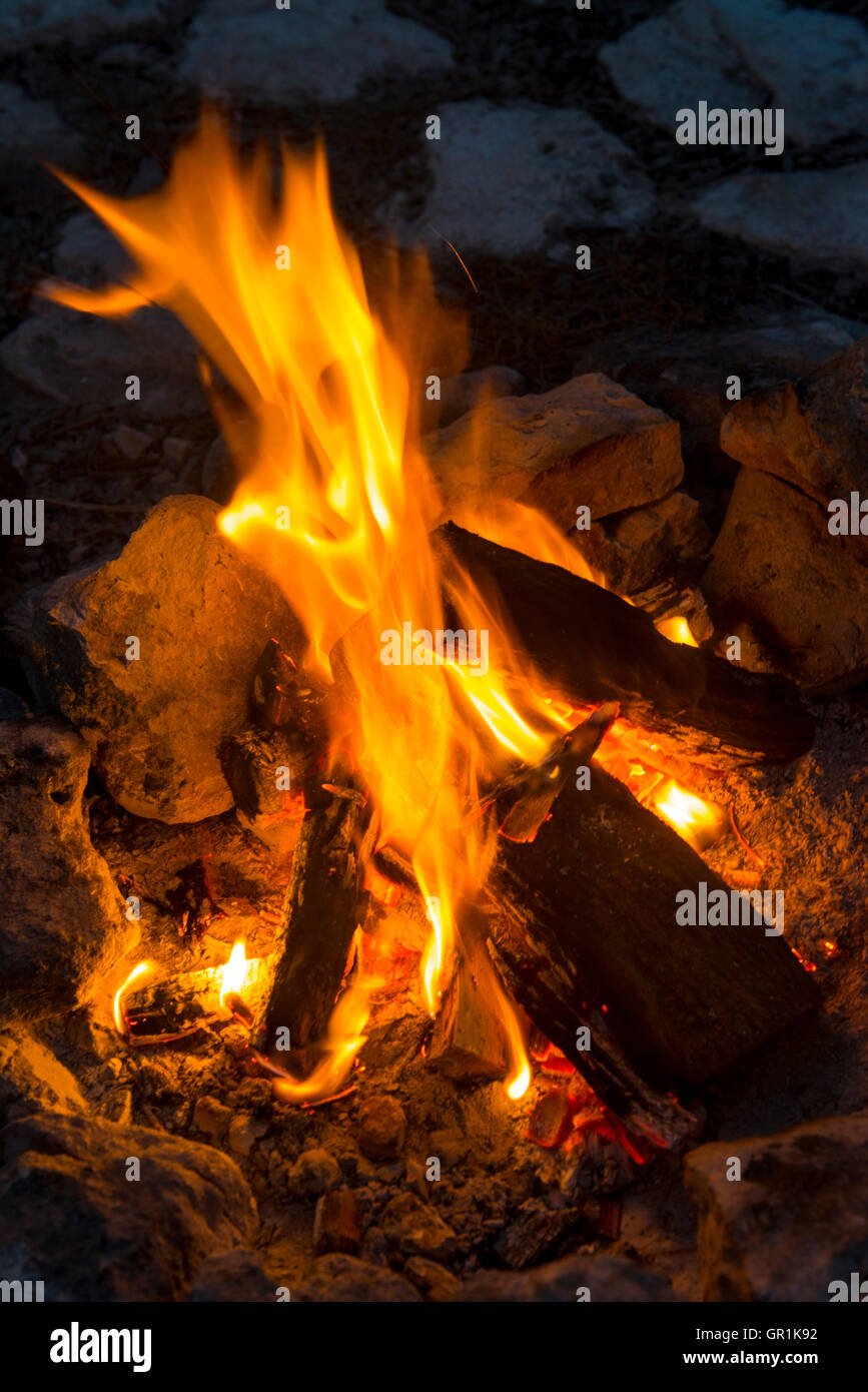 Closeup of burning logs in a campfire, Churchhaven, West Coast National Park, South Africa - Stock Image