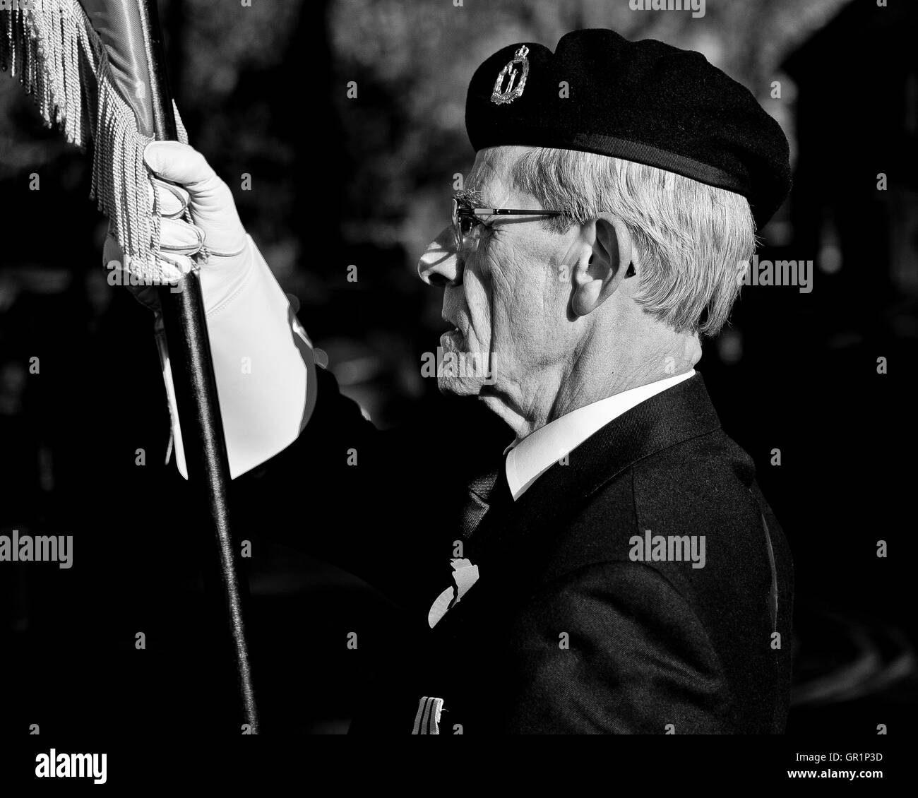 Remembrance Sunday military veterans parade - Stock Image