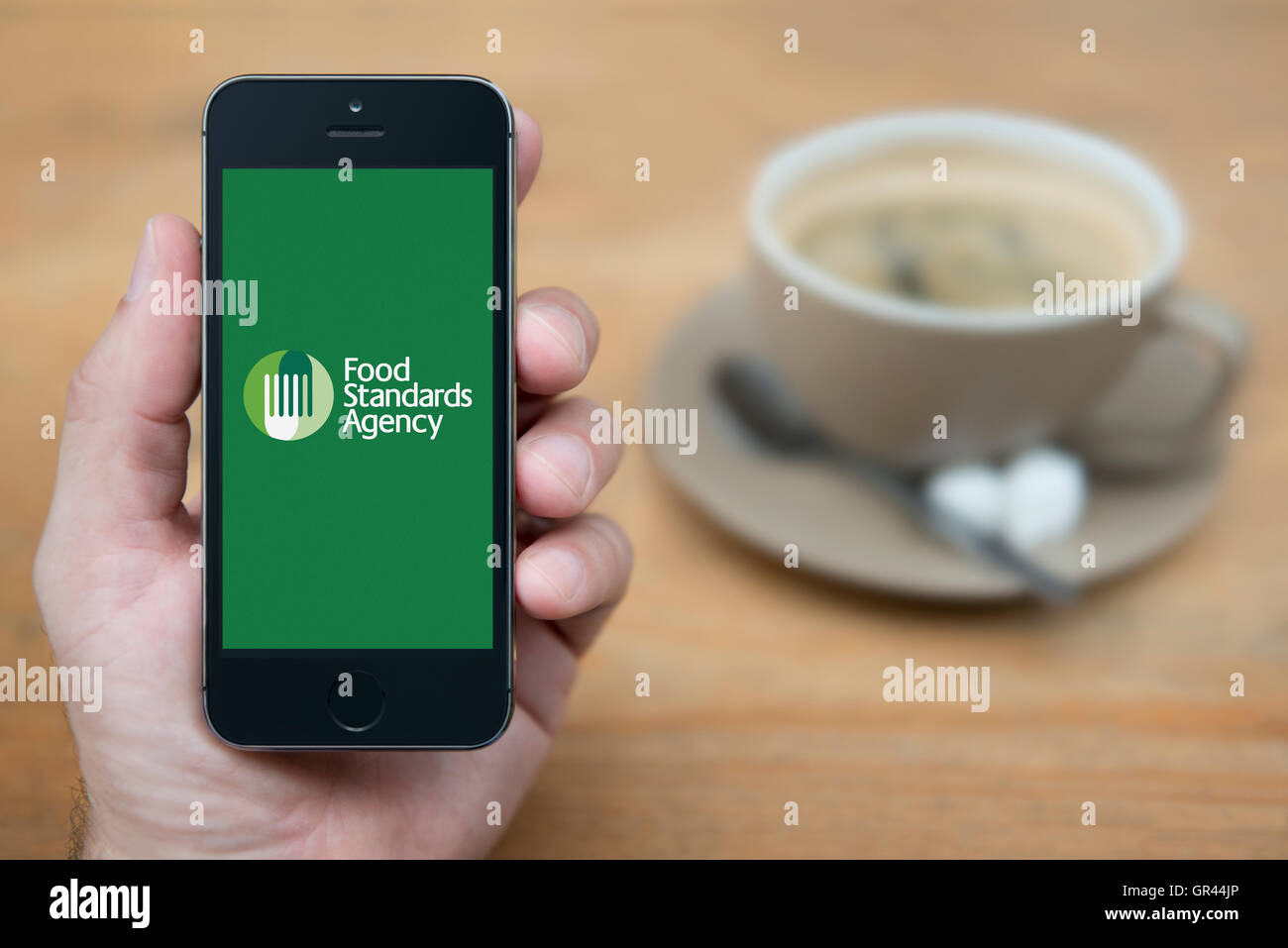 A man looks at his iPhone which displays the UK Government Food Standards Agency logo (Editorial use only). - Stock Image