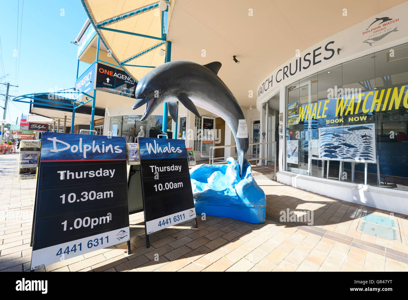 Whale and Dolphin Watching Agency in Huskisson, Jervis Bay, New South Wales, NSW, Australia - Stock Image