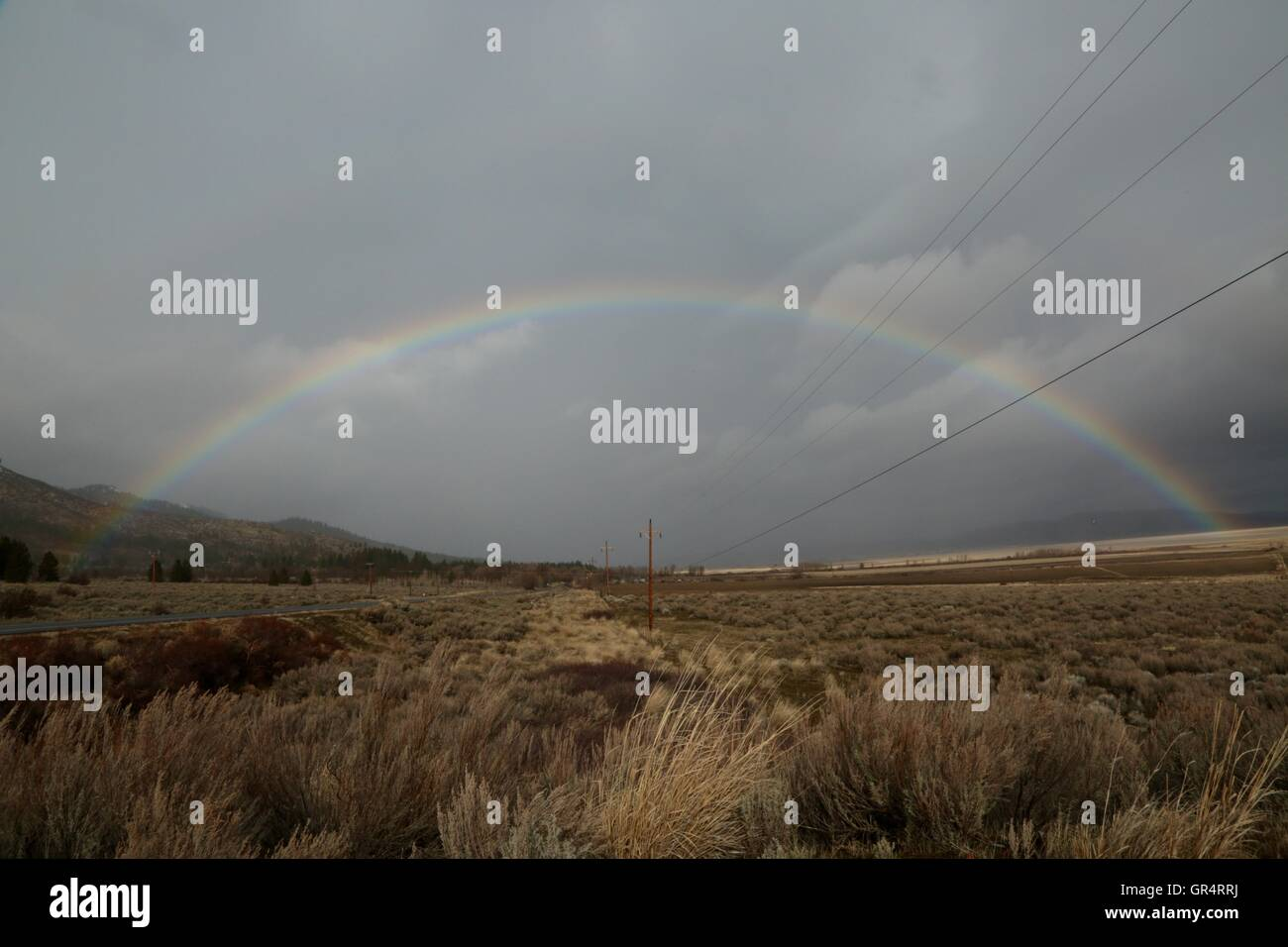 A beautiful rainbow stretching out over the cloud-soaked desert brush. - Stock Image