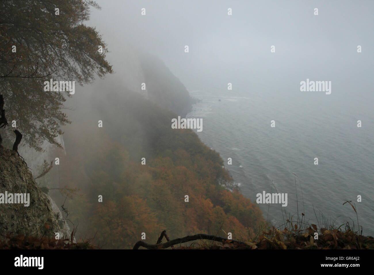 Island Rügen Autumn 2015, Mecklenburg West Pomerania , Germany Europe - Stock Image