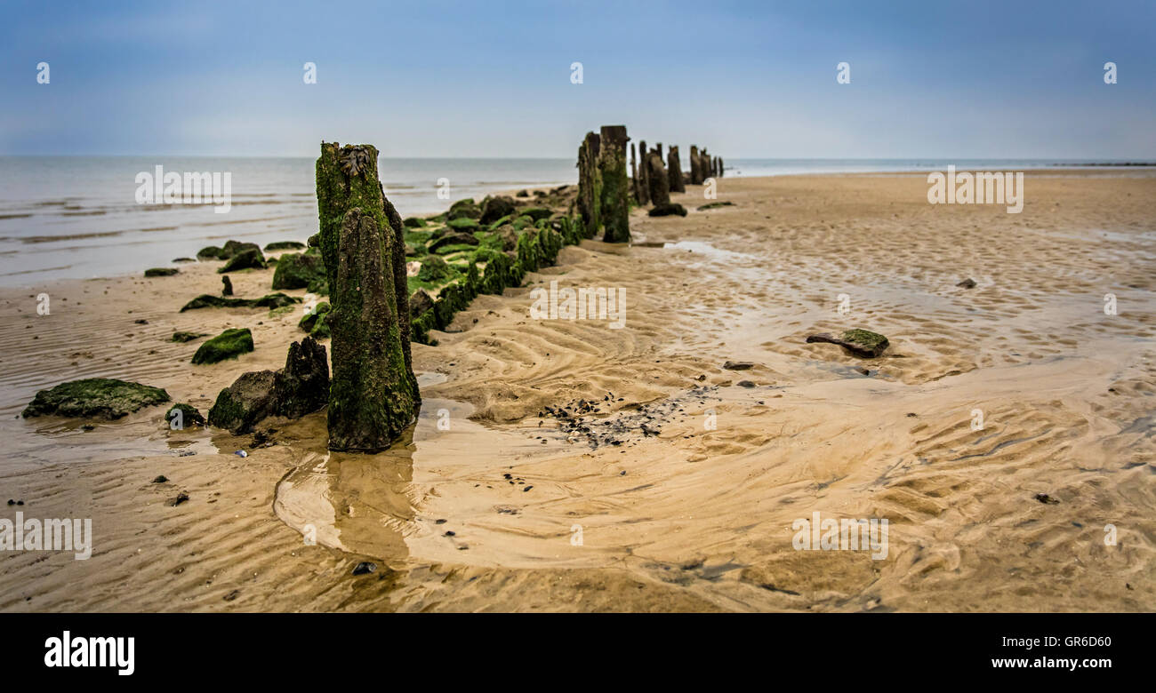 On The North Sea Beach Stock Photo