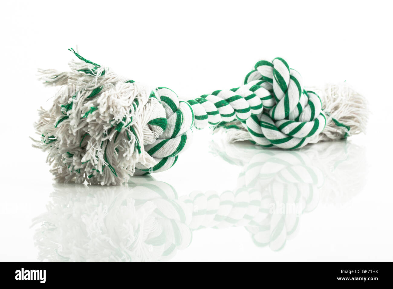Tug Toy For Dogs - Stock Image