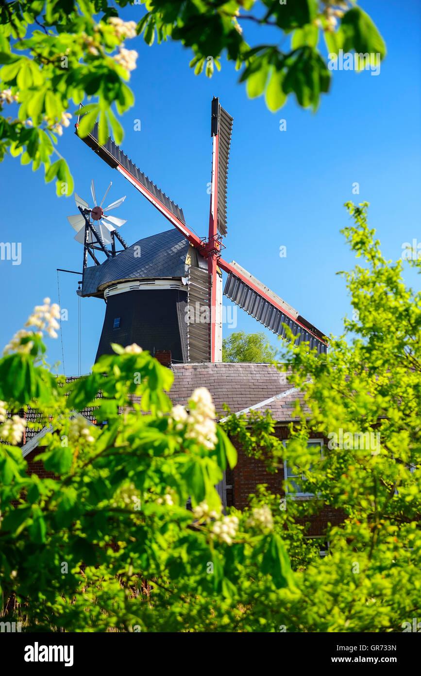 Windmill Boreas In Hamburg, Germany - Stock Image