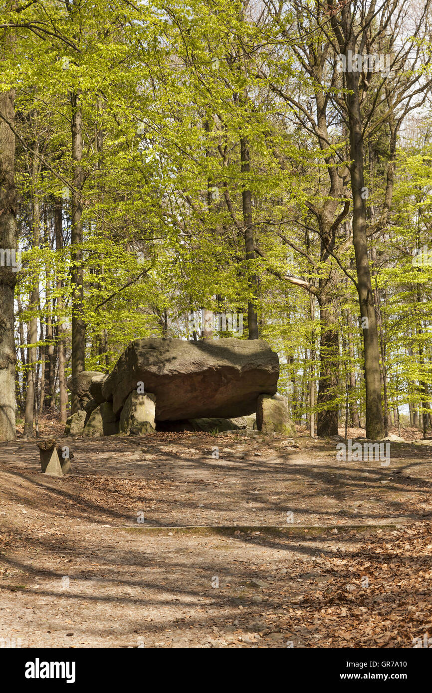 Neolithic Passage Grave, Megalithic Stones In Osnabrueck-Haste, Osnabrueck Country, Germany Stock Photo