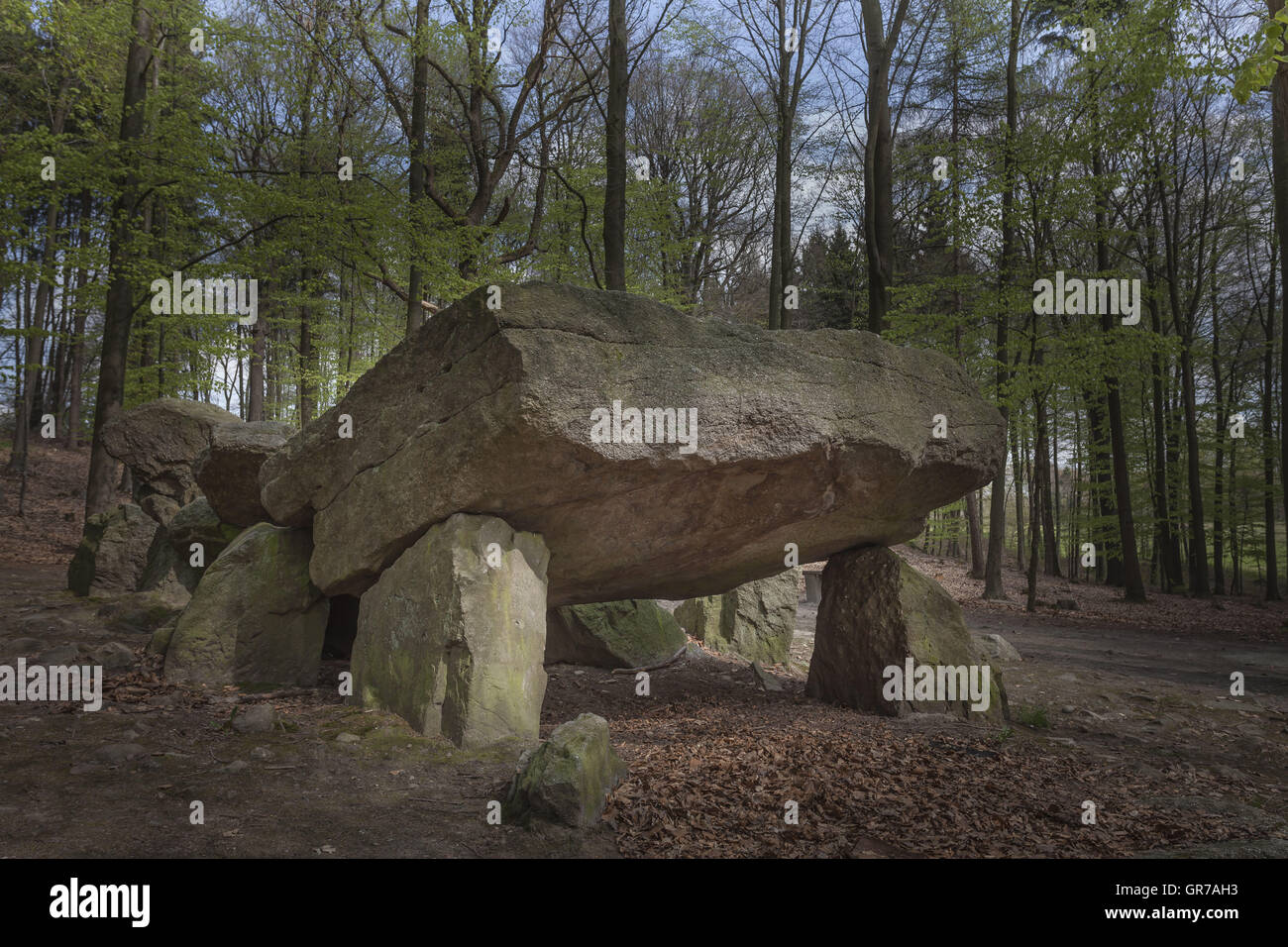 Neolithic Passage Grave, Megalithic Stones In Osnabrueck-Haste, Osnabrueck Country, Germany - Stock Image