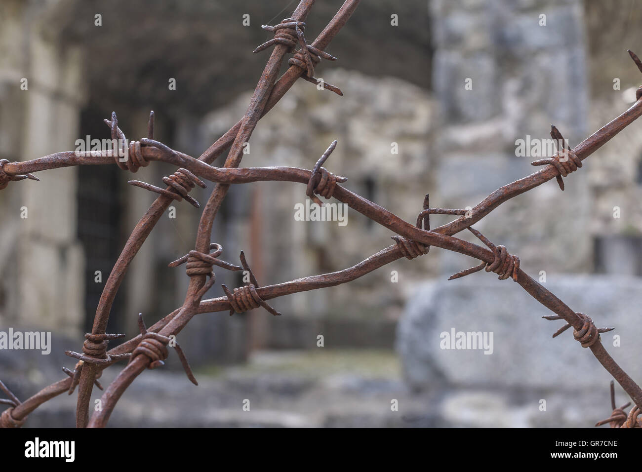 Rusty Barbed Wire On Old Italian War Fortifications Stock Photo ...