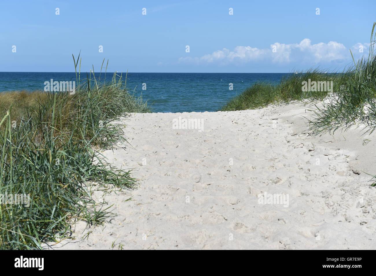 Baltic Beach - Stock Image