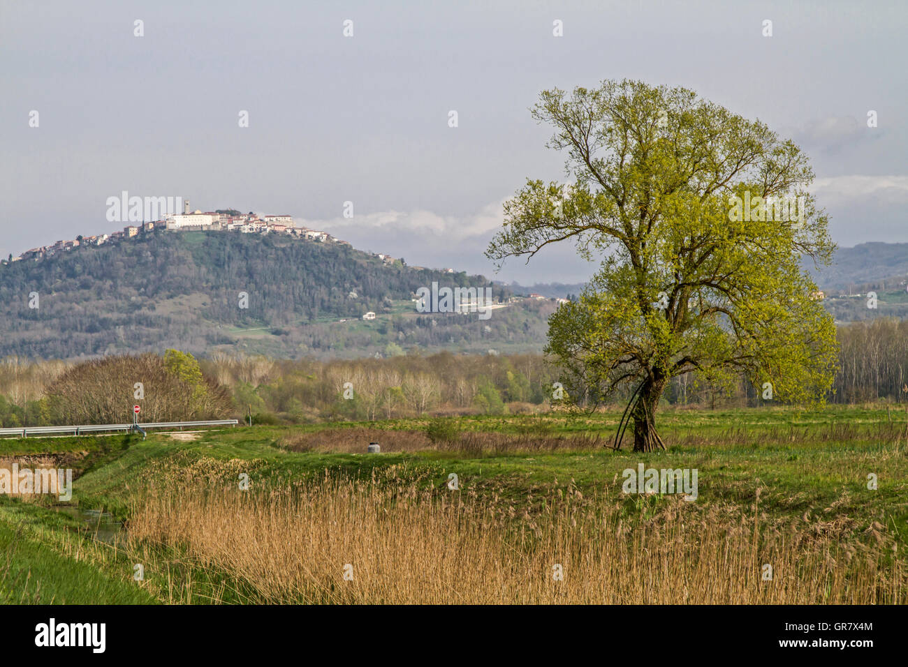 The Small Medieval Town Of Motovun Is Perched On A 280 M High Hilltop In Mirnatal Stock Photo