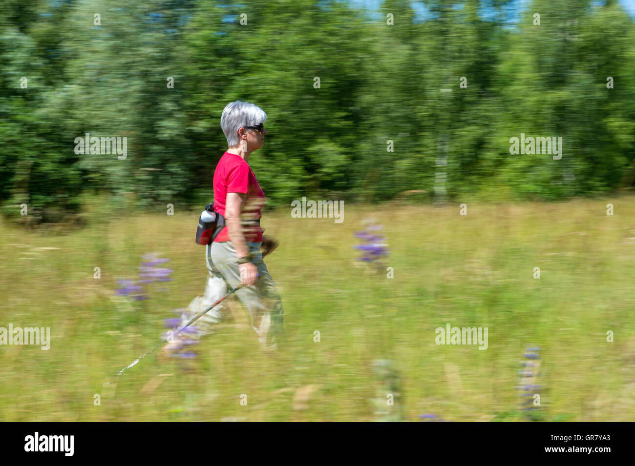 Senior In A Red Shirt Runs On A Green Lawn. - Stock Image