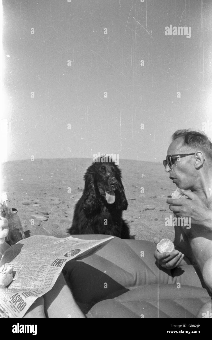 Beach 1960 - Stock Image