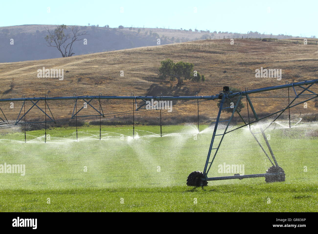A pivot irrigation system watering a crop in Ouse, Tasmania, Australia, - Stock Image