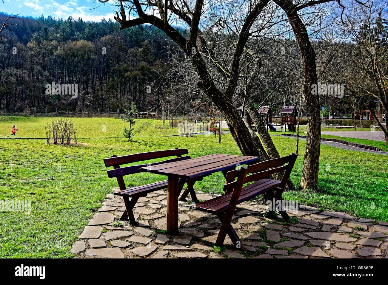 Hard Anchored Wooden Benches And Wooden Table Under A Tree Stock Photo
