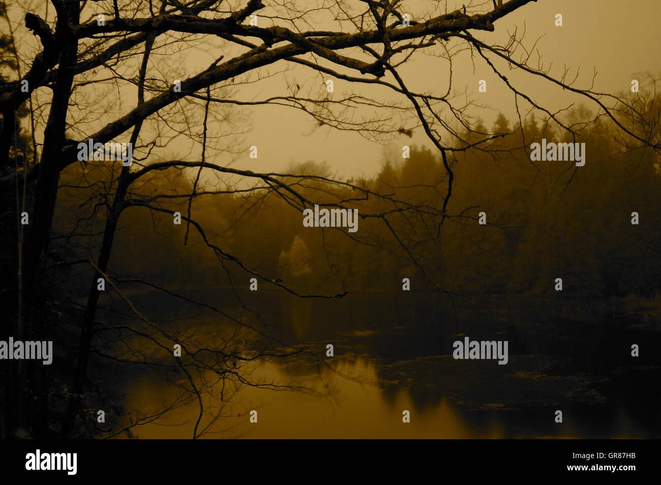 dusk by the lake - Stock Image