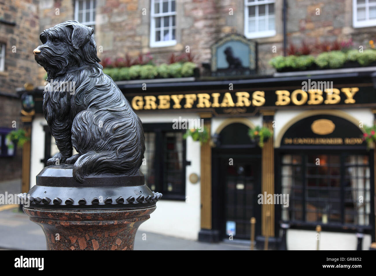 Scotland, Edinburgh, Old Town, Scottisher pub, full-size statue of Greyfriars Bobby, monument of the loyal dog before - Stock Image