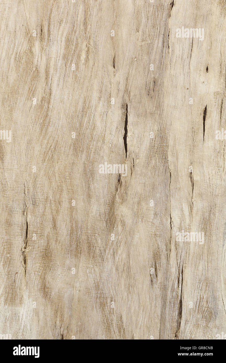 Old Weathered Wooden Board - Stock Image