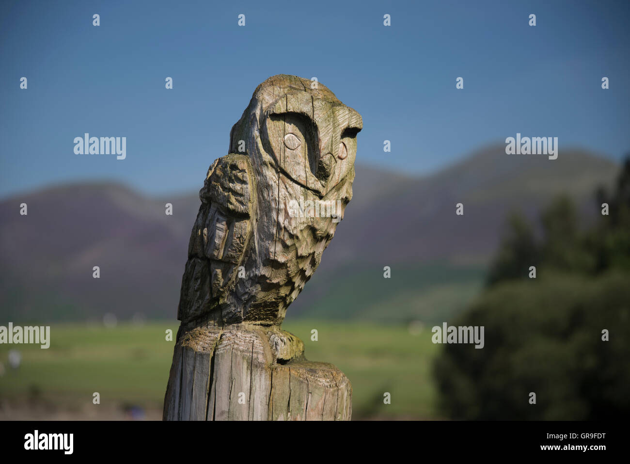 Carved owl at the Keswick Launch on, Derwentwater, The Lake District, Cumbria, UK - Stock Image