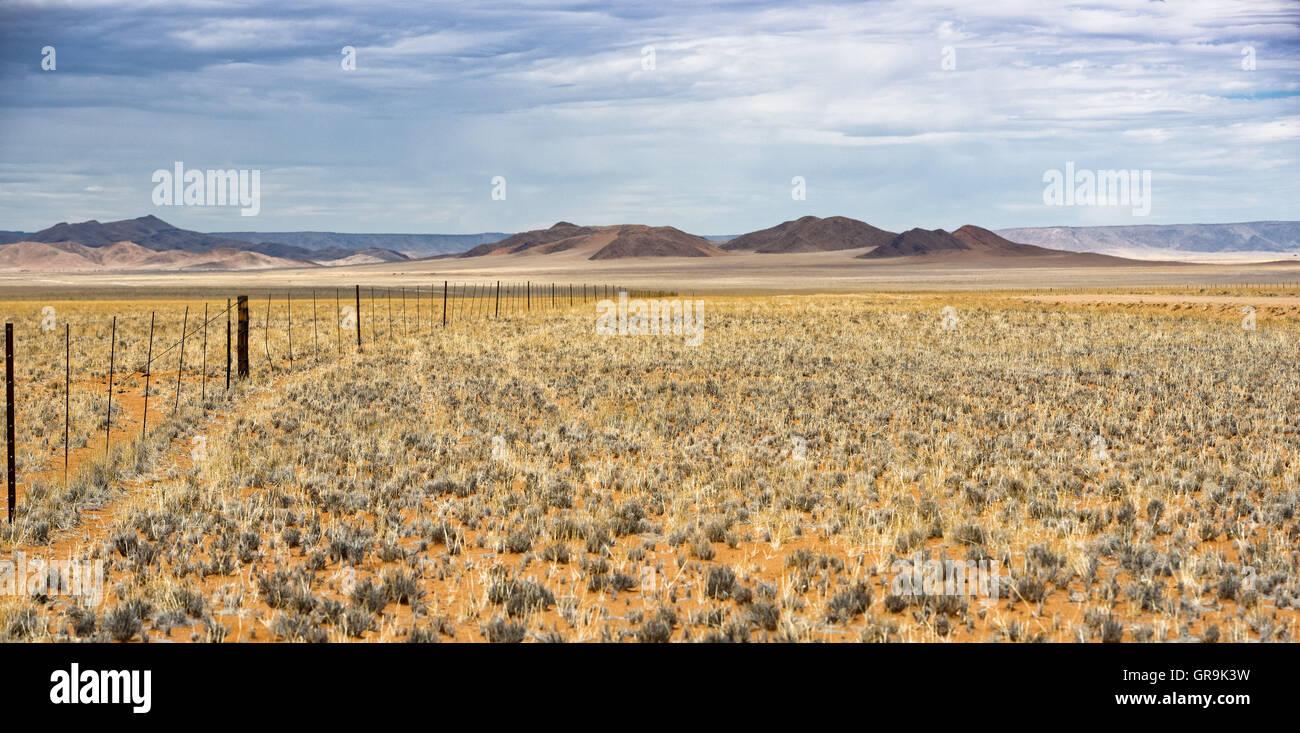 Landscape On The D707 Namib Rand Namibia - Stock Image