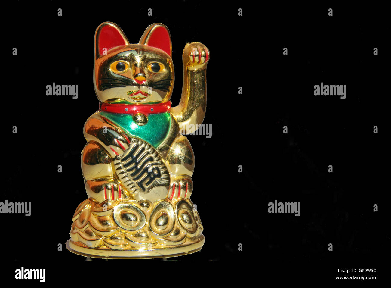 Bliss Cat - Stock Image
