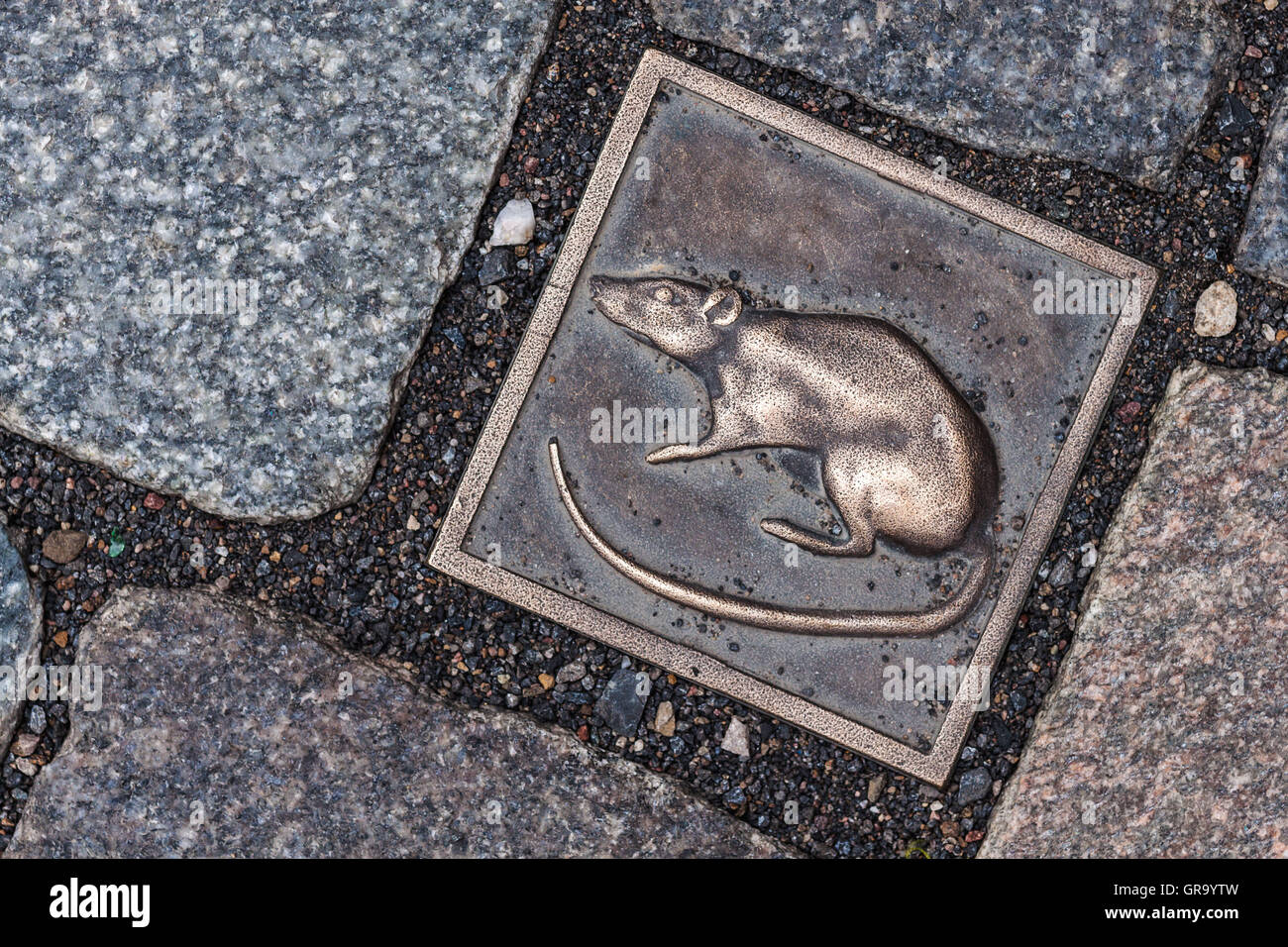 Bronze Rat As A Guide In The Pavement Of The Town Of Hamelin - Stock Image