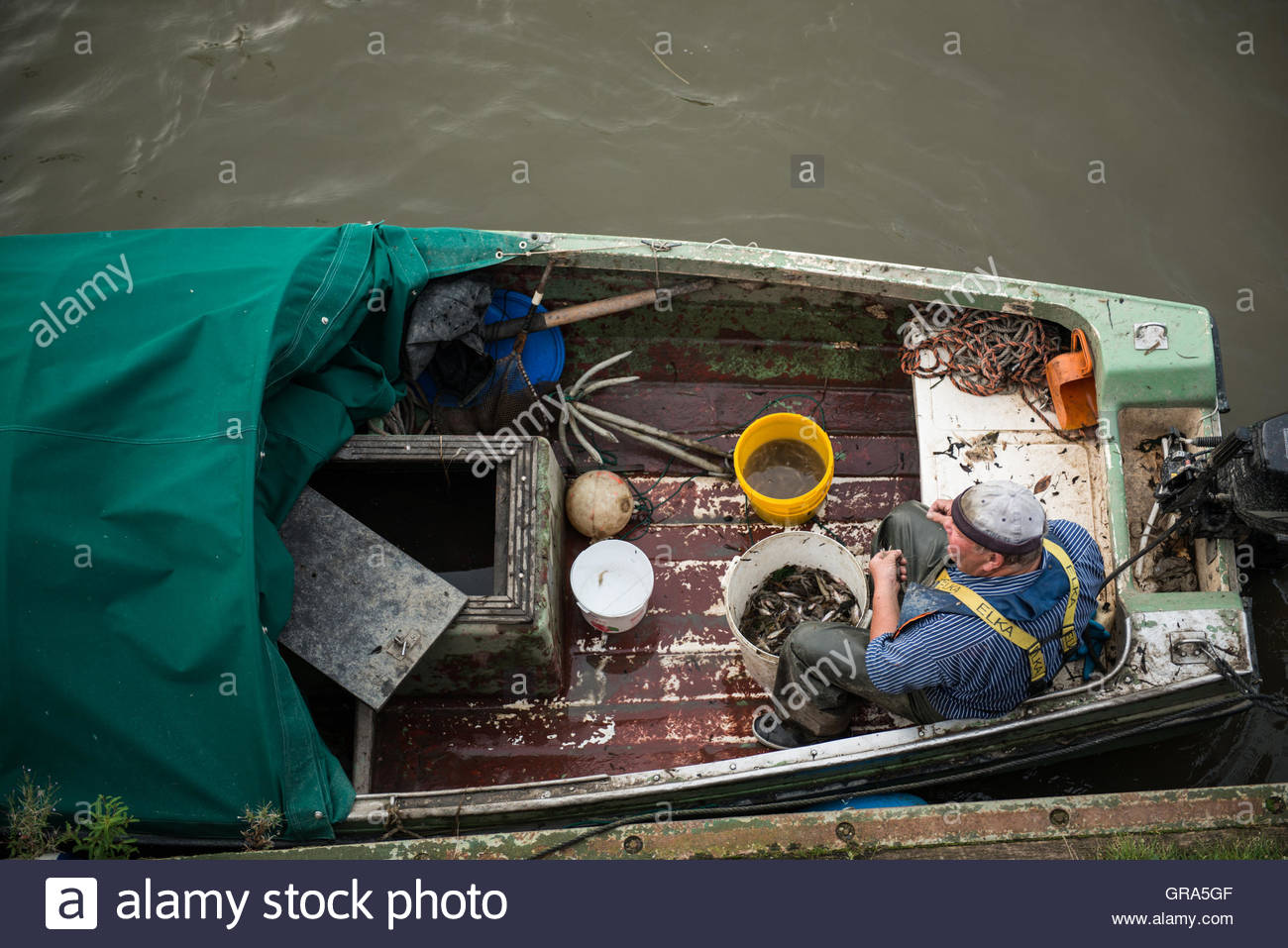 Fisher Ordered His Catch, Hamburg - Stock Image