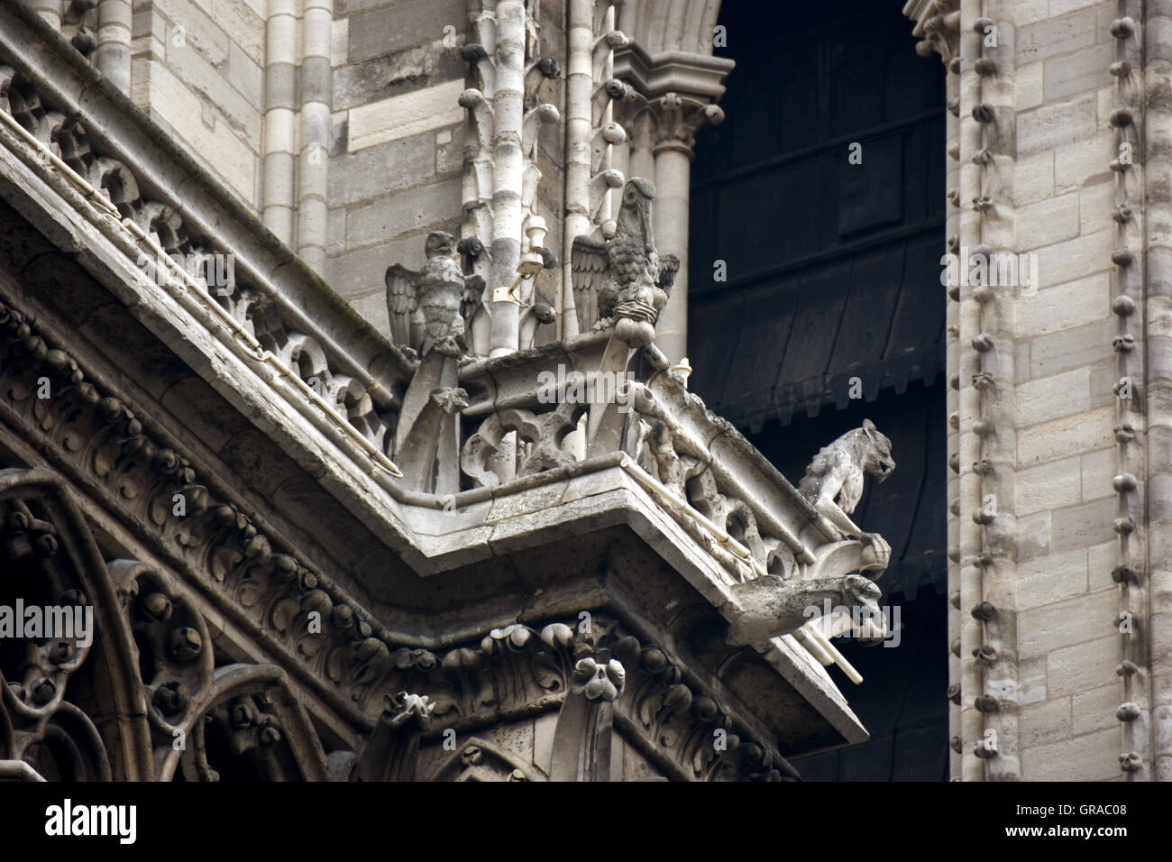 Gargoyles, the guardians of Notre Dame Cathedral - Stock Image