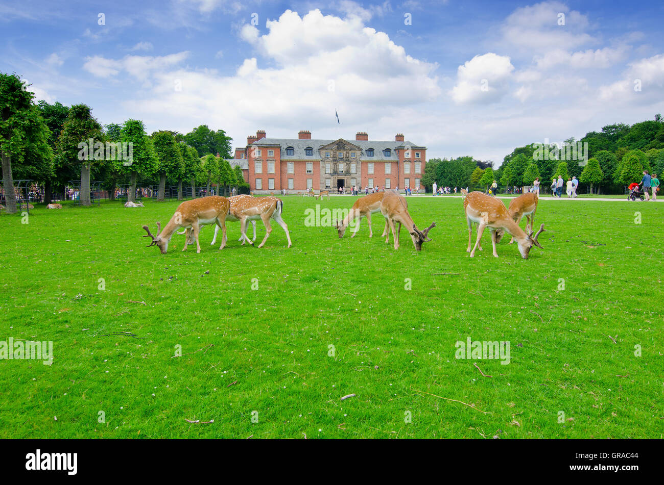 Dunham Massey Park,  formerly the home of the last Earl of Stamford and owned by the National Trust since 1976 - Stock Image