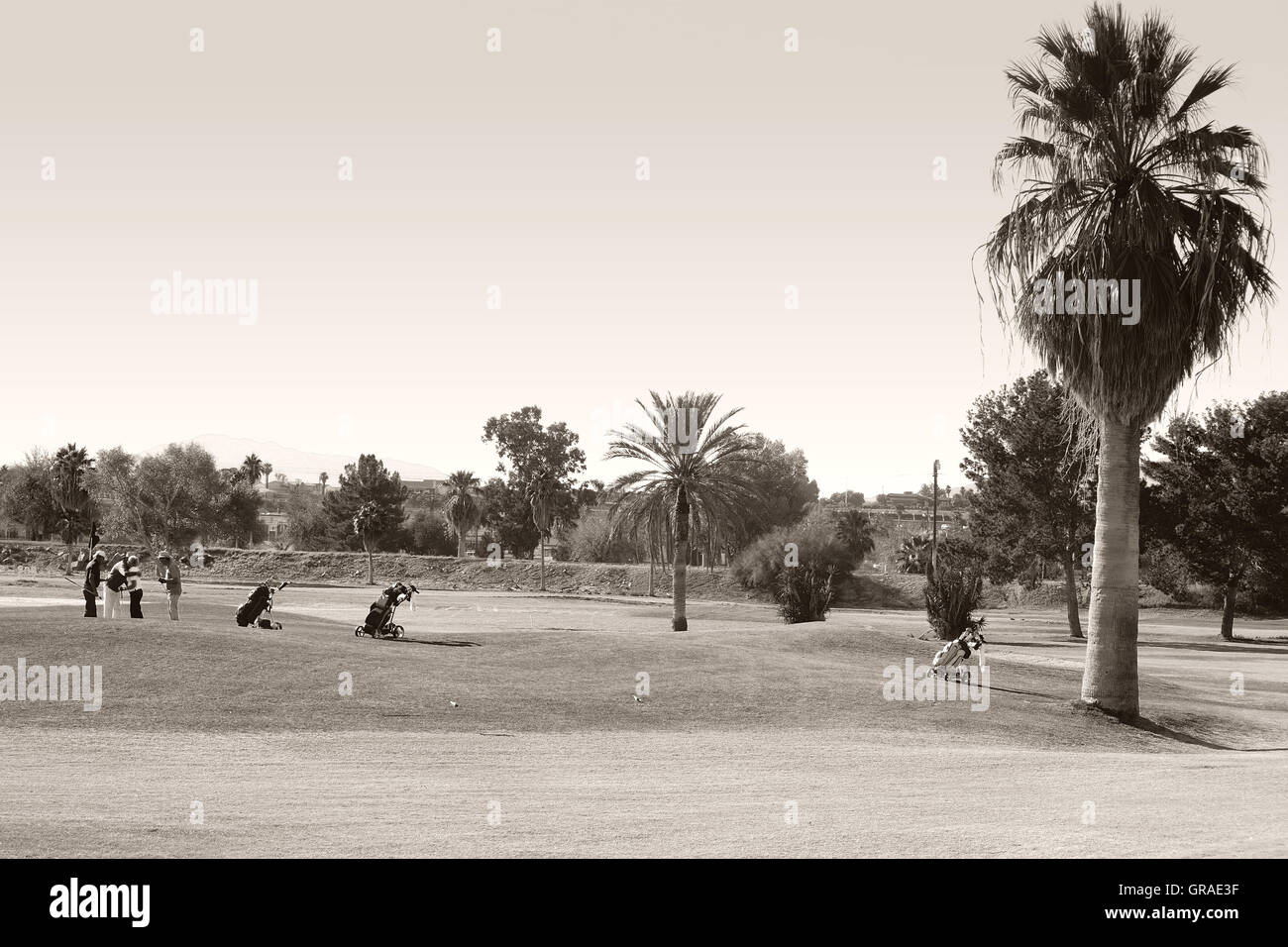 Pensioners Play Golf - Stock Image
