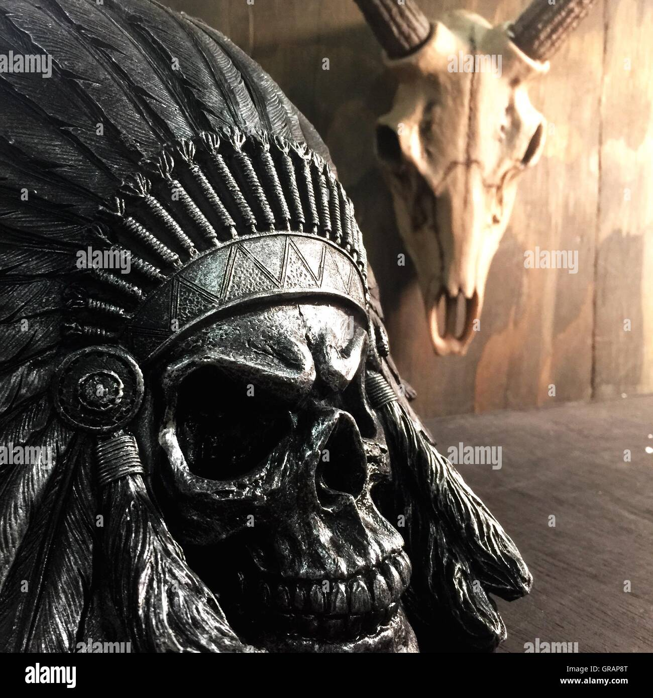 Close-Up Of Metallic Chief Skull And Animal Skull In Room - Stock Image