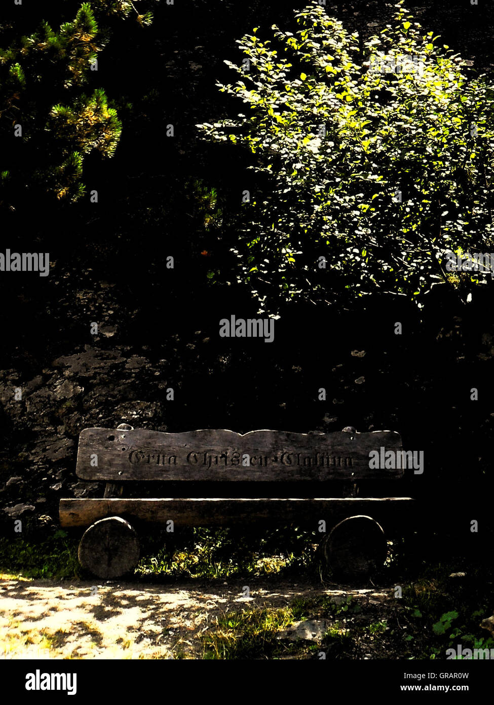 Wooden Bench Against Trees On Sunny Day Stock Photo