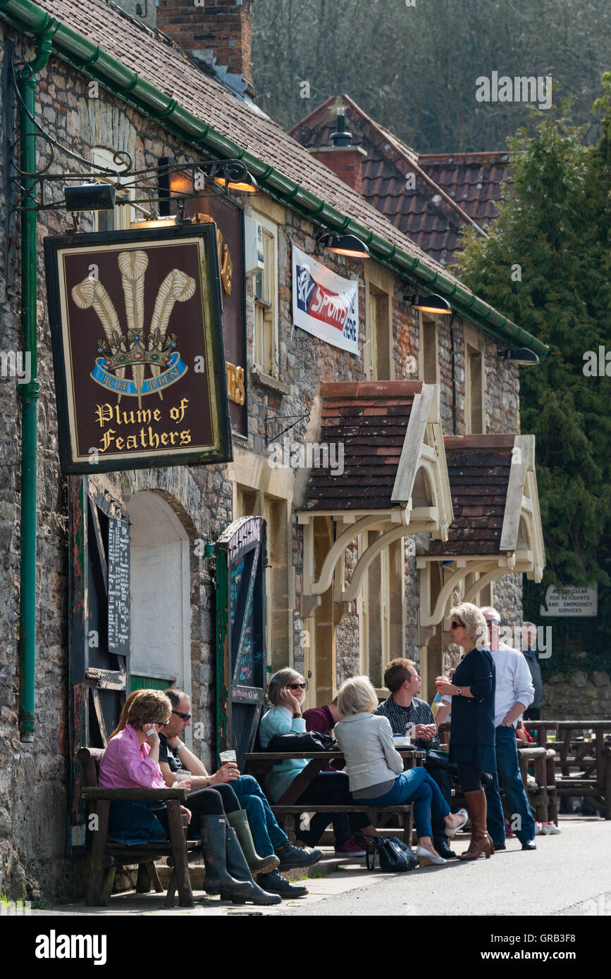 Plume of Feathers pub, Rickford, North Somerset - Stock Image