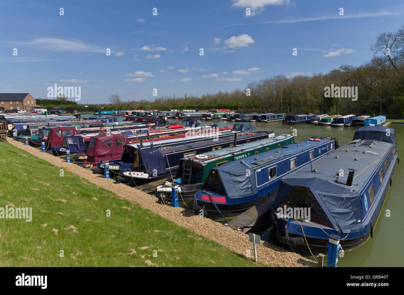 Lines of narrowboats moored at Blisworth Marina, Northamptonshire, UK - Stock Image
