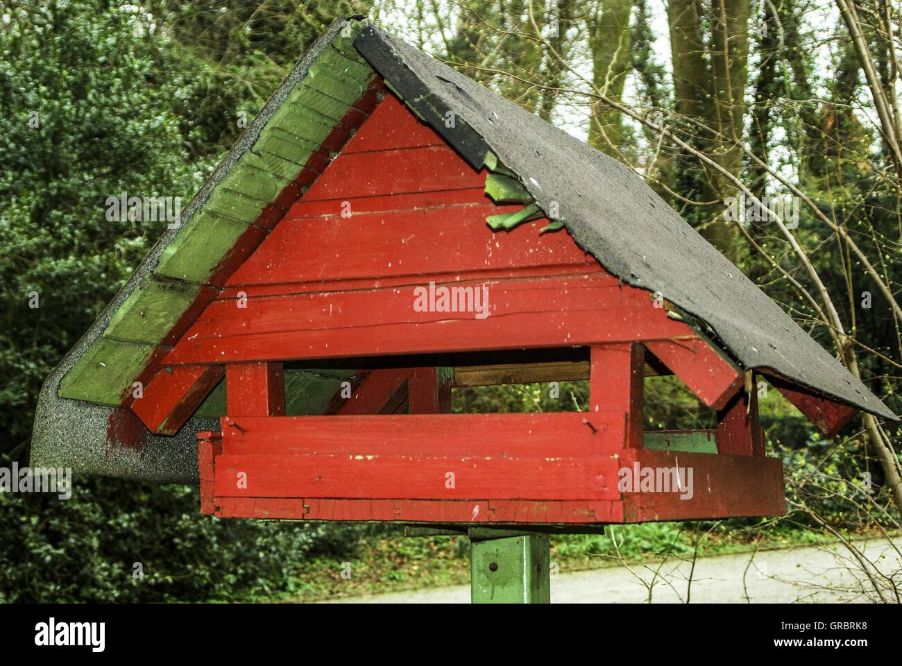 Garden, Birdhouses