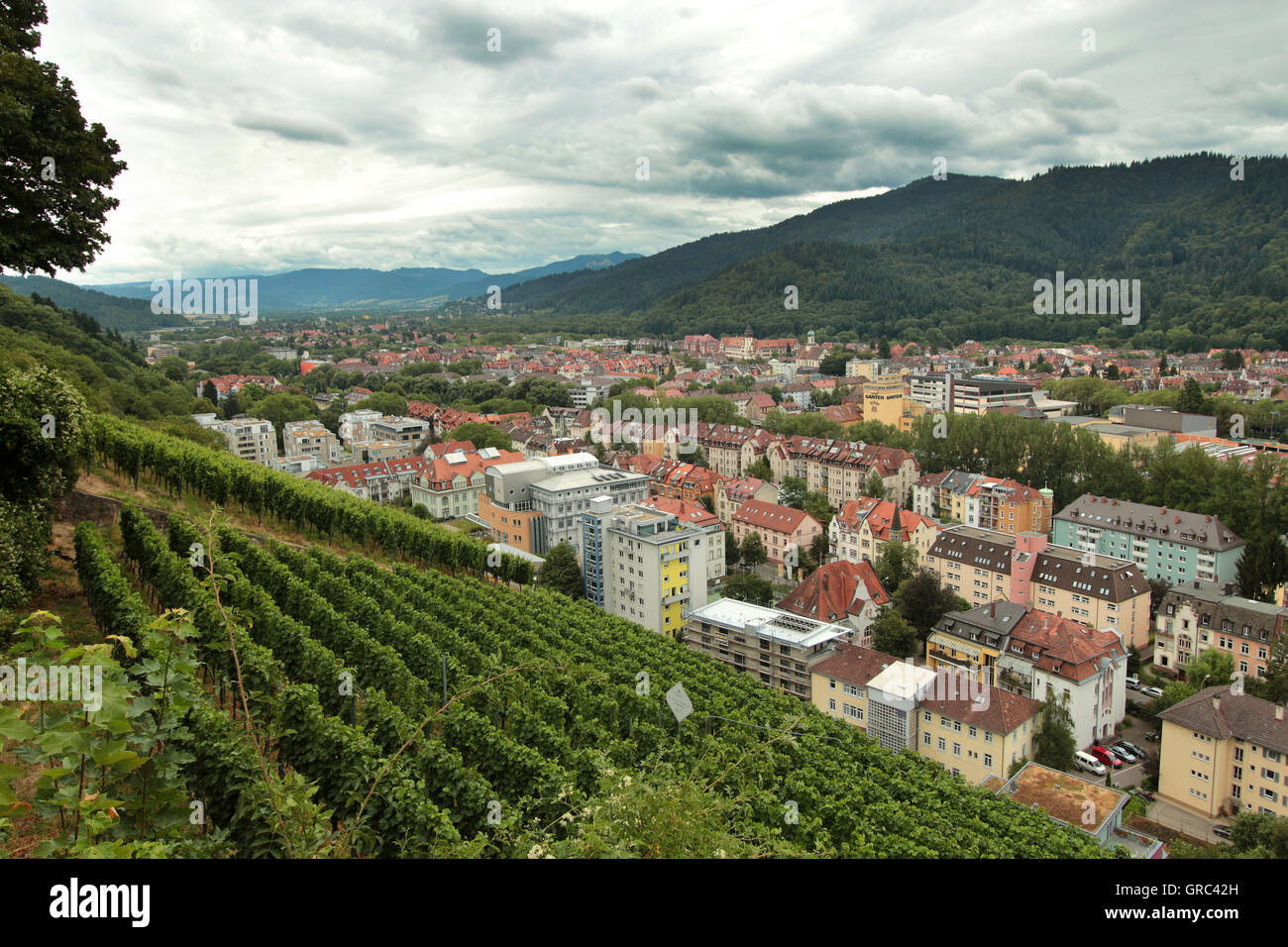Freiburg With Black Forrest Mountain Range Overview Stock Photo