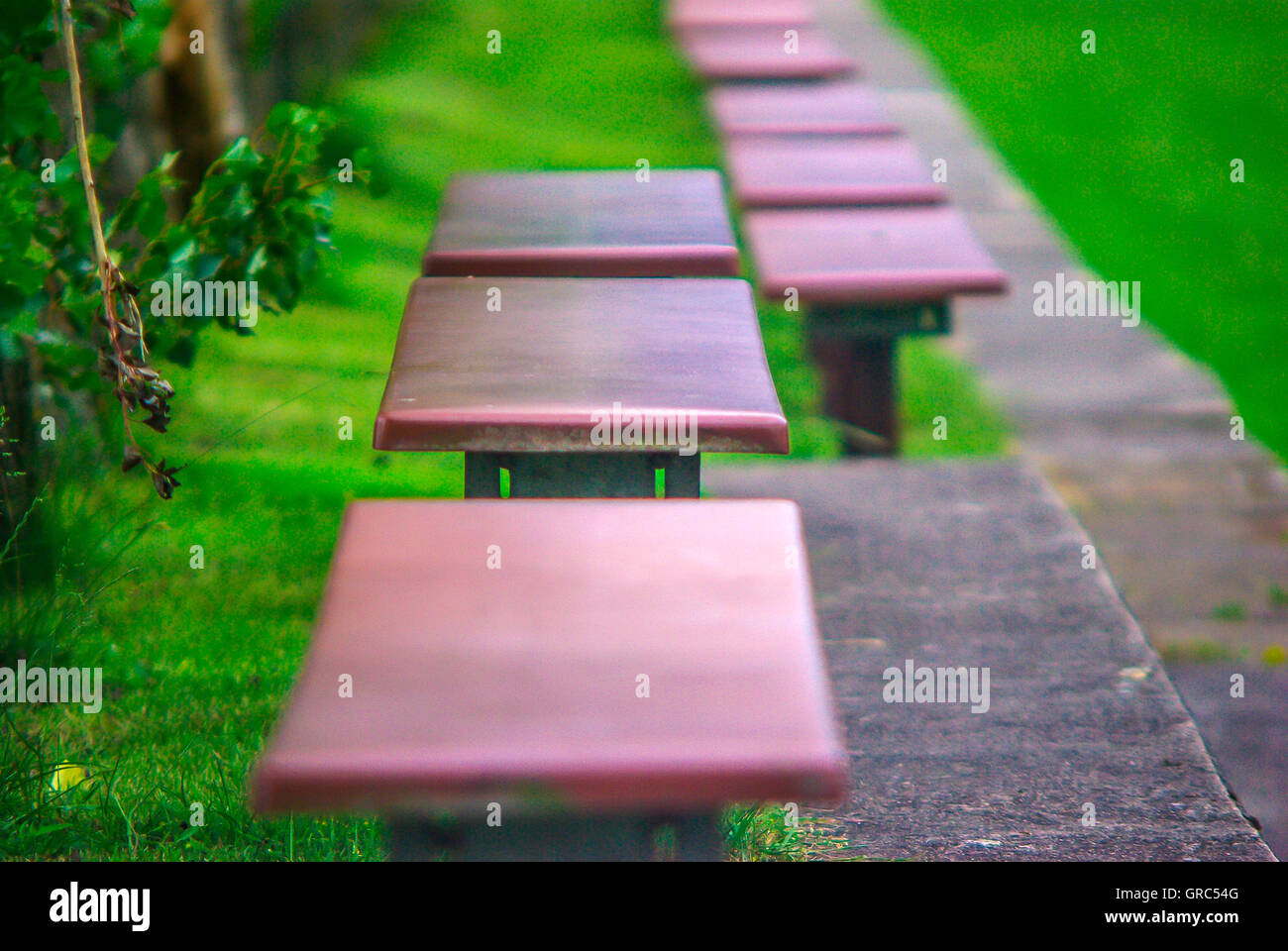 Benches On The Sidelines - Stock Image