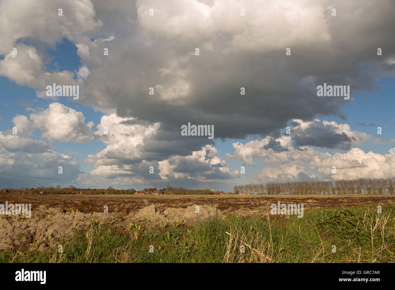 Spring In East Frisia - Stock Image