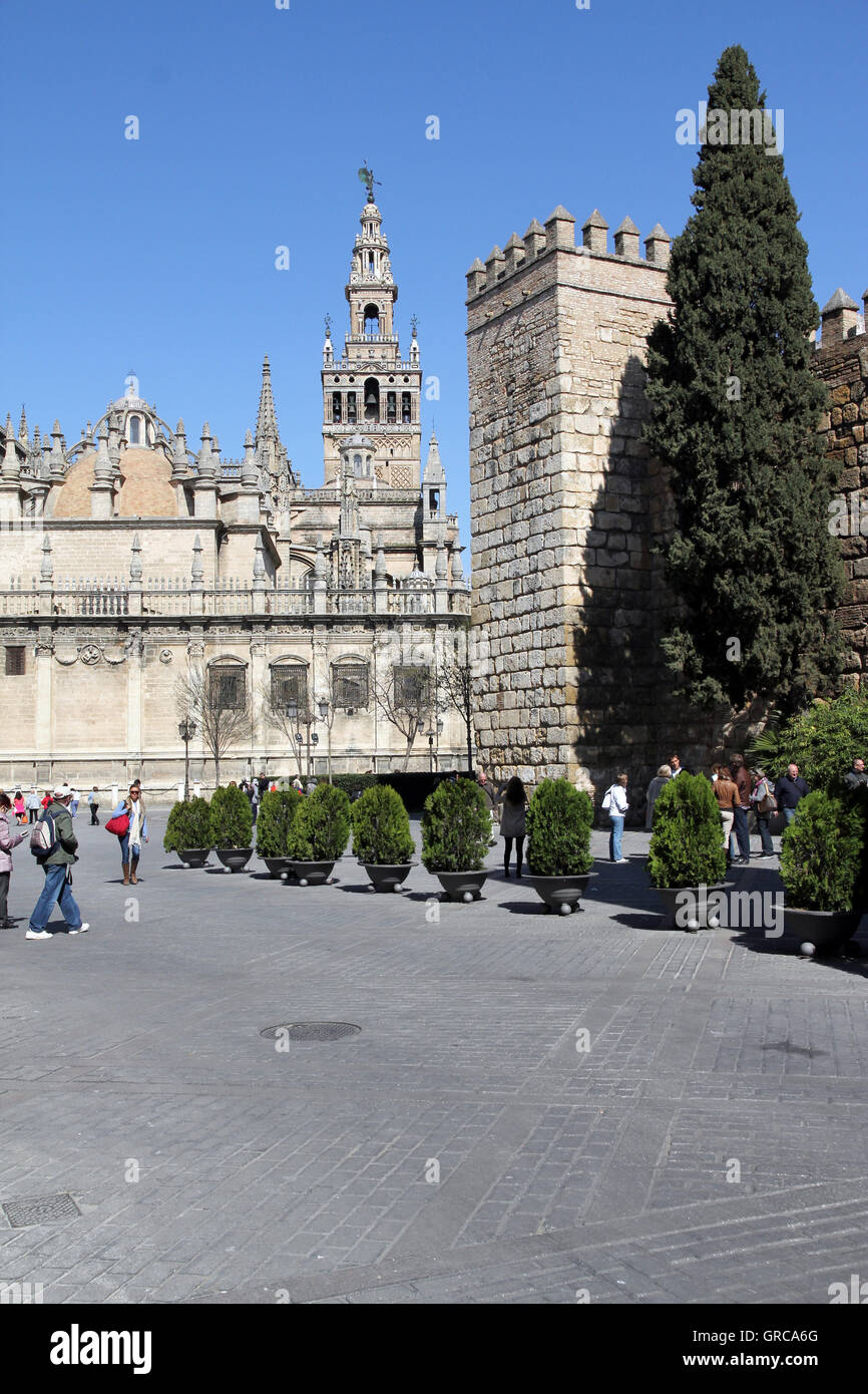 Cathedral Of Sevilla - Stock Image