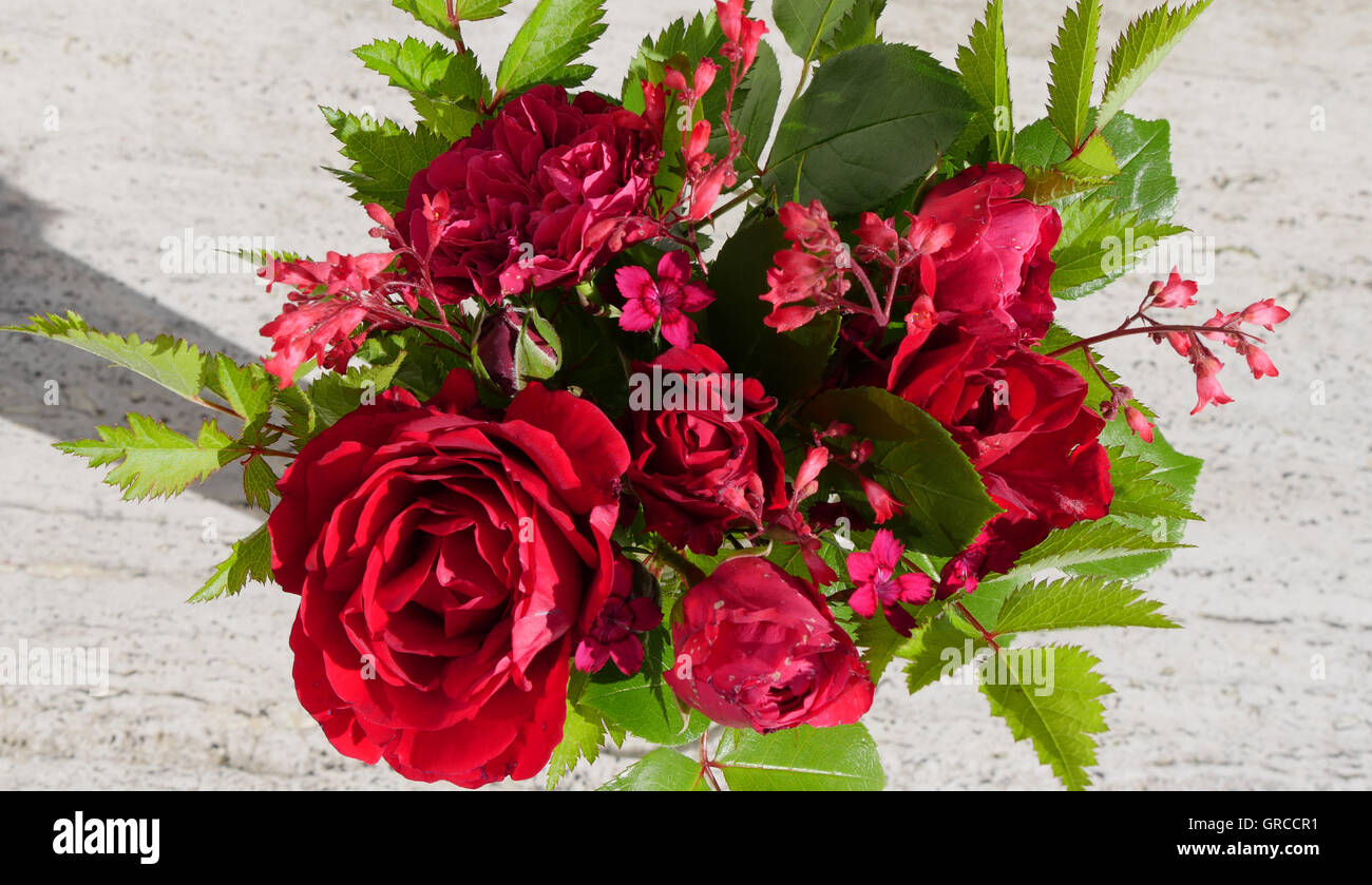 Red Roses Symbolism Stock Photos Red Roses Symbolism Stock Images