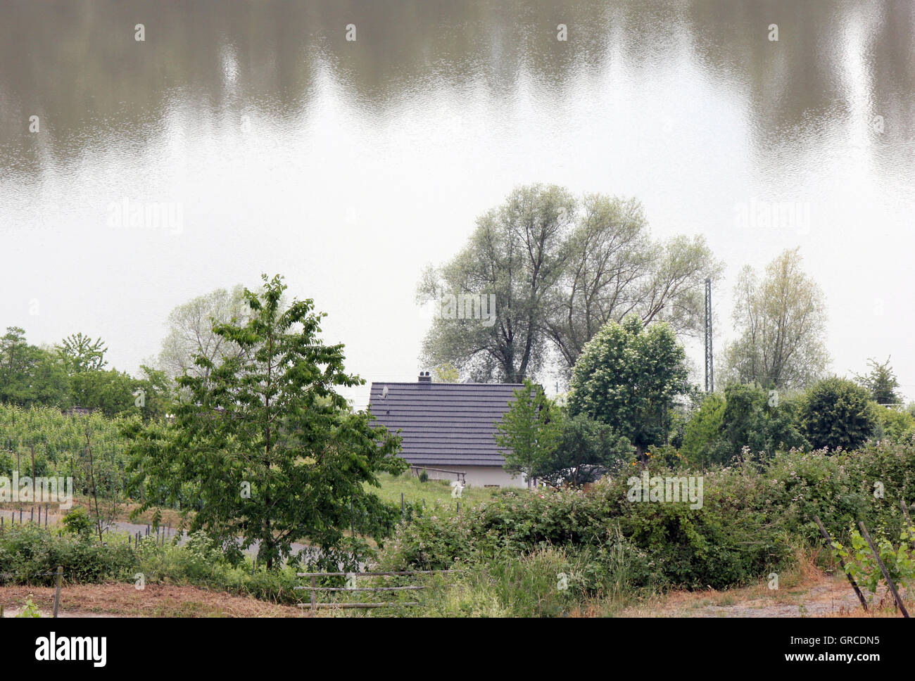 Idyll At The Water - Stock Image