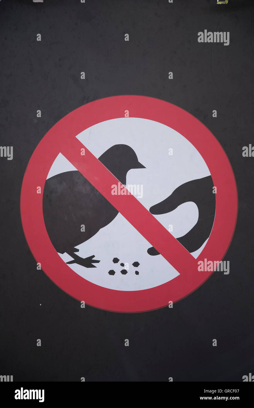 Don't feed the pigeons sign in Trafalgar Square, central London. UK England - Stock Image