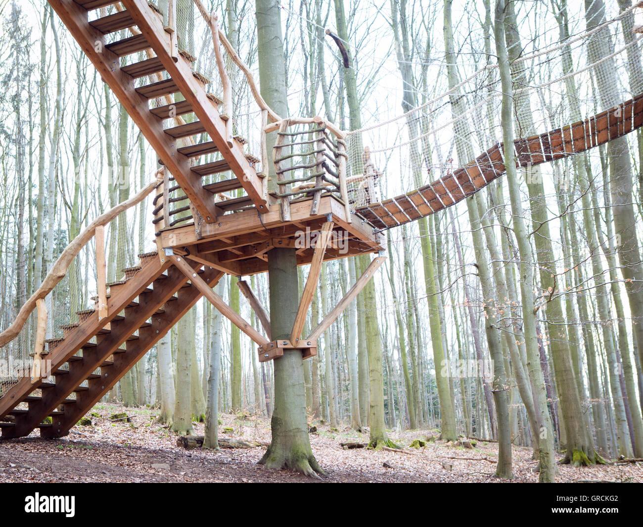 Stairs, Ladder, Bridge, Suspension Bridge To The Tree House