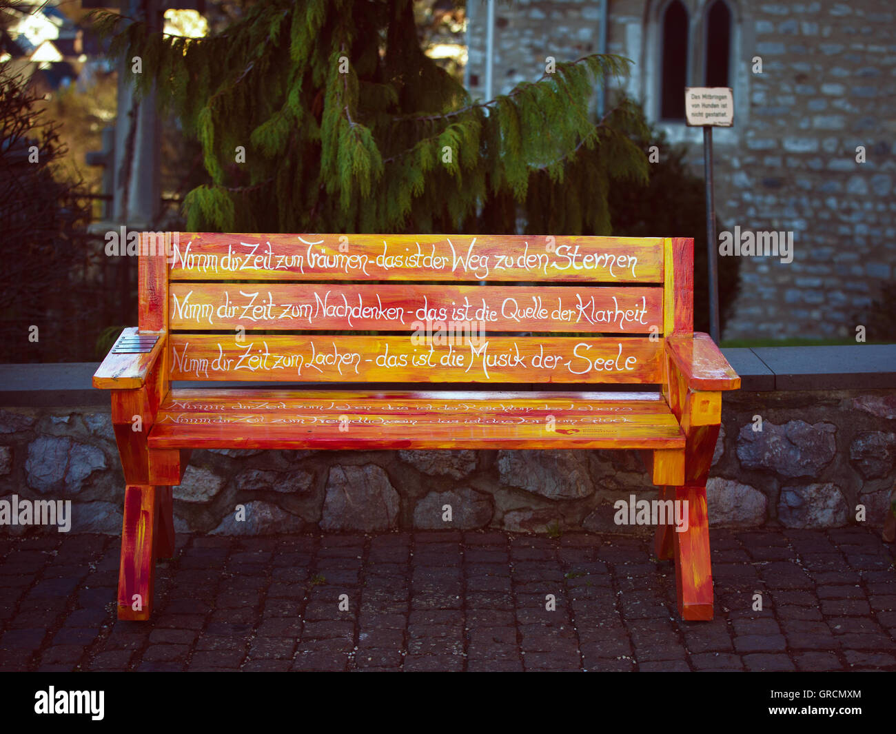 Wisdom Labeled Park Bench - Stock Image