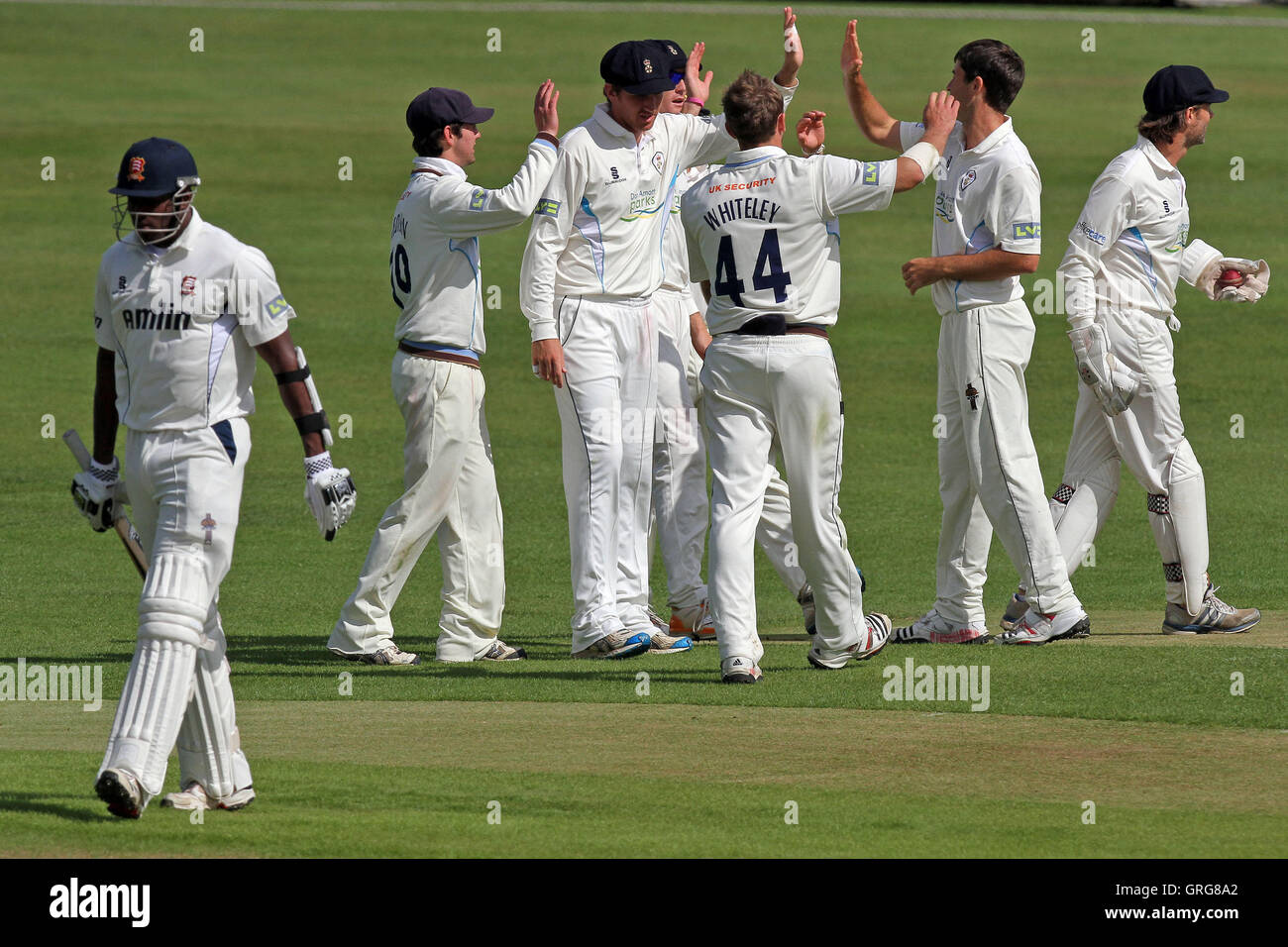 Tim Groenewald of Derbyshire celebrates the wicket of Maurice Chambers - Essex CCC vs Derbyshire CCC - LV County - Stock Image